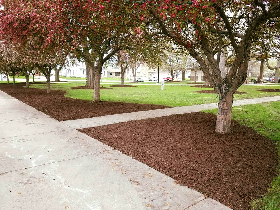 City Park Mulching